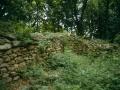 L'insediamento archeologico di Bric San Viter