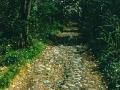 sentiero-beria