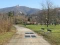 Vista della Basilica di Superga dal Parco del Meisino
